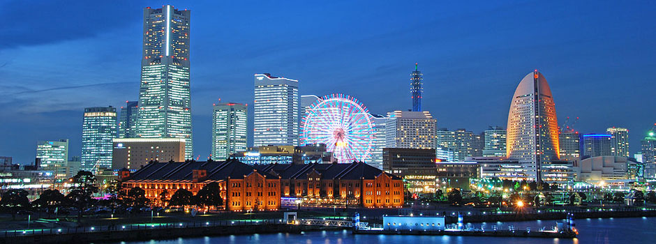 Tax Law - View of Tokyo, Japan's Skyline and Daikanransha Ferris Wheel